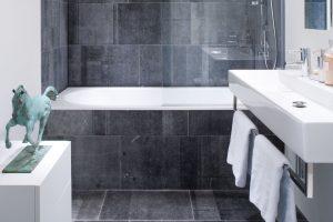 01 Pierre Bleue Belge - Salle de bains - Brut de Sciage