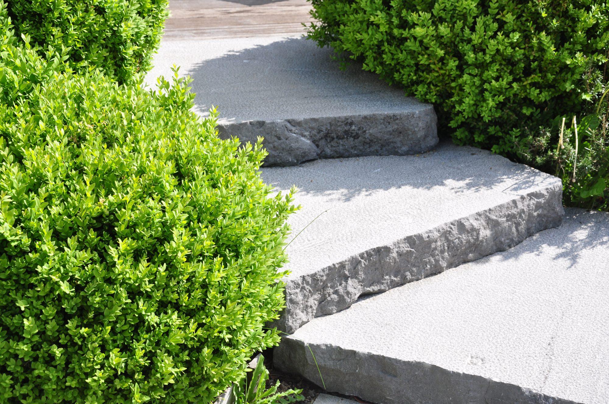 07 - Pierre Bleue Belge - escalier